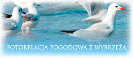 Pogoda Rewal, Pobierowo, Niechorze - Fotorelacja Pogodowa