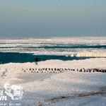 Zima nad morzem - Niechorze