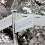Zima nad morzem - Tablice drogowe w Pobierowie
