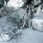 Zima nad morzem - Kanał Liwka w Pogorzelicy