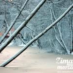 Zima w Pogorzelicy nad morzem