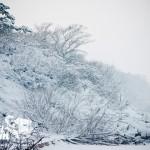 Zima nad morzem - wydmy