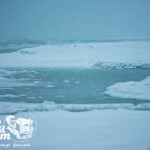 Zima nad morzem - Plaża zimą