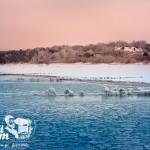 Zima nad morzem - Widok z mola w Niechorzu