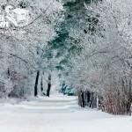 Zima nad morzem - Droga pomiędzy Rewalem a Niechorzem